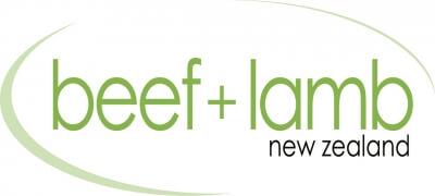 beef lamb003
